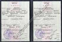 Ph Certified Russian Translator Professor 66