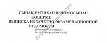 Ph Certified Russian Translator Professor 87