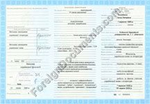 Certified translation of Transcript to Ukraine Diploma